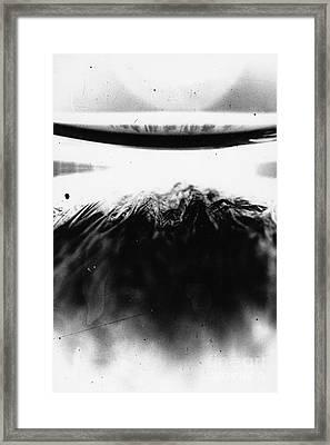 Cf Exp. Framed Print