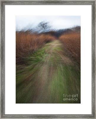 The Narrow Path - Cg10-000004 Framed Print by Daniel Dempster