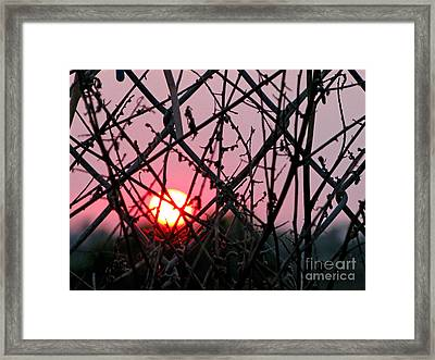 Framed Print featuring the photograph Chain Link Sunset by Jennie Breeze