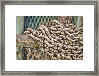 Chained Up Framed Print by Heather Applegate