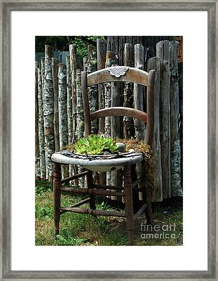 Chair Planter Framed Print