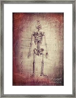 Chalkboard Skeleton Framed Print