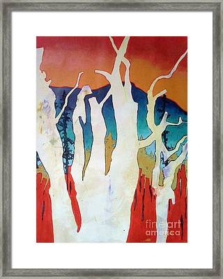 Chama Forest Framed Print by Collette Jones