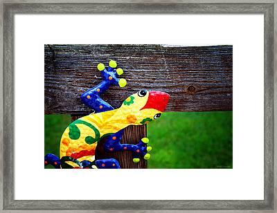 Chameleon Framed Print by Greg Simmons