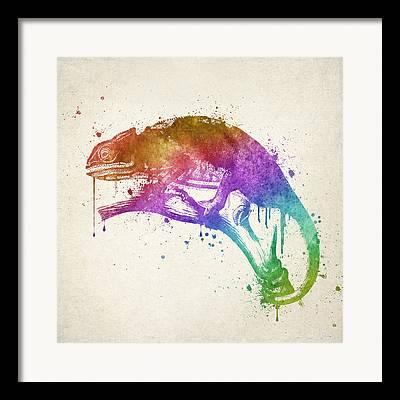 Chameleon Digital Art Framed Prints