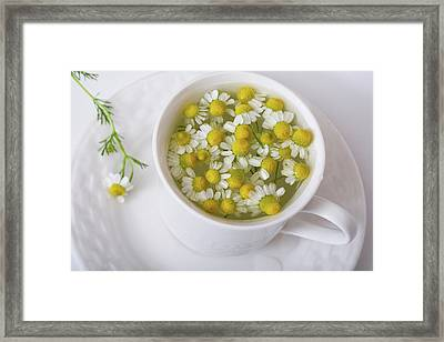 Chamomile Tea Framed Print