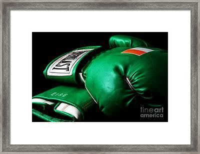 Champ Framed Print by John Rizzuto