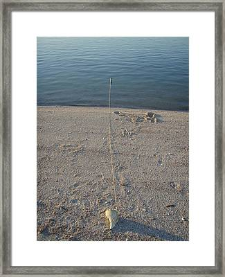 Framed Print featuring the photograph Champagne Chillin by Robert Nickologianis