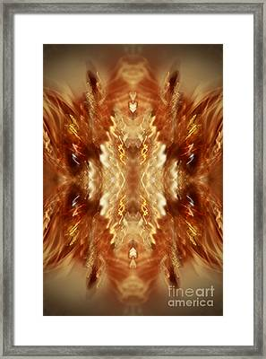 Champagne Party Framed Print by Inspired Nature Photography Fine Art Photography