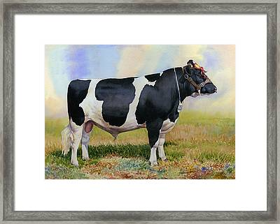 Champion Friesian Bull Framed Print by Anthony Forster