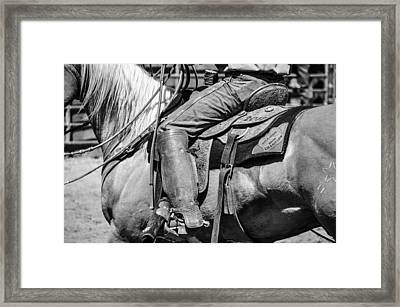 Champion Framed Print by Jan Davies