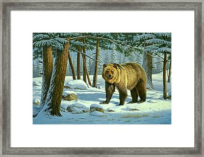 Chance Encounter - Grizzly Framed Print