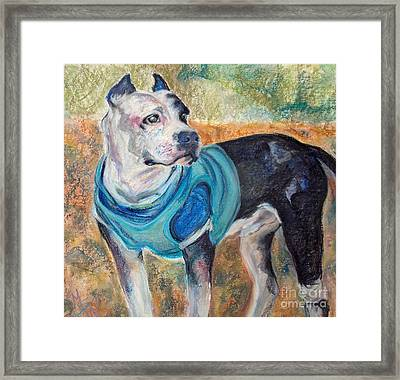 Chance  Framed Print by Mindy Sue Werth