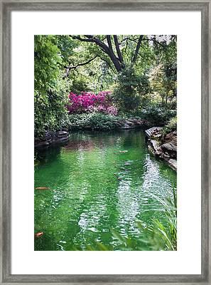 Chandor Gardens Framed Print by Lezlie Faunce