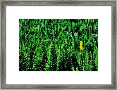 Change Is Good Framed Print by Benjamin Yeager