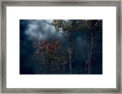 Change Of Season Framed Print by Bonnie Bruno