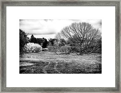 Change Of Season Framed Print by John Rizzuto