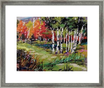 Framed Print featuring the painting Changing Birches by John Williams