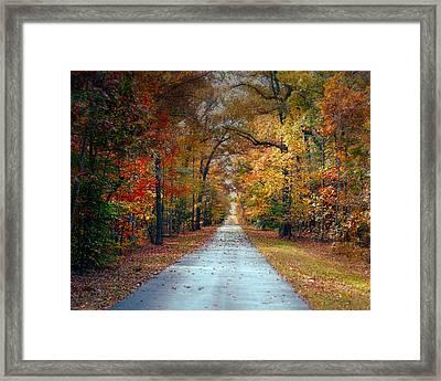 Changing Season - Autumn Landscape Framed Print by Jai Johnson