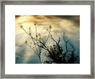 Changing Sky Framed Print