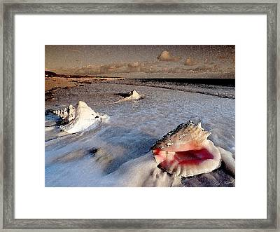 Changing Tide Framed Print by Cole Black