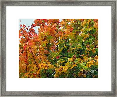 Framed Print featuring the photograph Changing Times by Tikvah's Hope