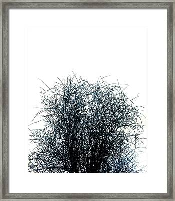 Linear Paradigm As Chaos Into Form Framed Print by Micael Pace