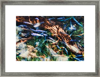 Framed Print featuring the photograph Chaotic Mess by Joshua Minso