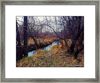 Chaotic Tranquility Framed Print by Misty Herrick