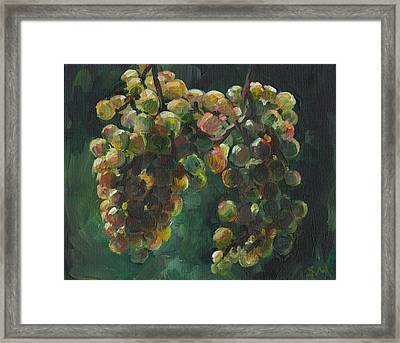Chardonnay Framed Print by Susan Moore