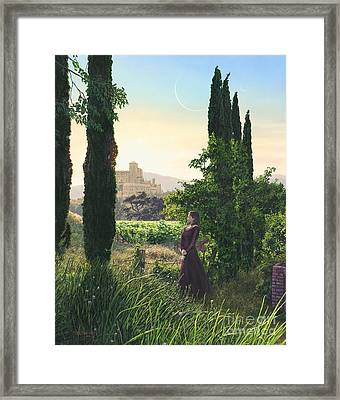 Chardonnay Wine Country Fantasy Framed Print by Stu Shepherd