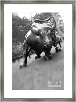 Charging Bull 2 Framed Print
