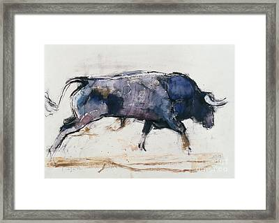 Charging Bull Framed Print by Mark Adlington