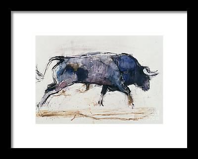Matador Framed Prints