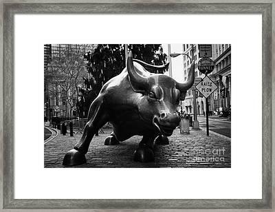 Charging Bull Statue Bronze Sculpture Bowling Green Park New York City Framed Print