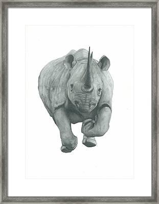 Charging Rhino Framed Print by Rich Colvin