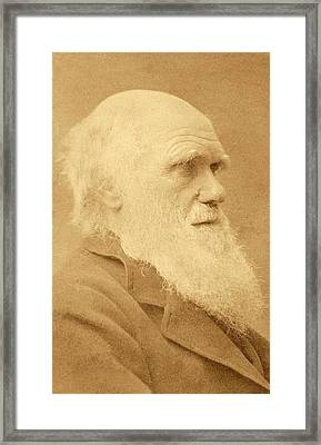 Charles Darwin Framed Print by American Philosophical Society