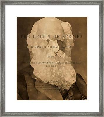 Charles Darwin The Origin Of Species Framed Print