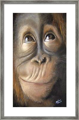 Charles The Monkey Framed Print by Michelle Iglesias