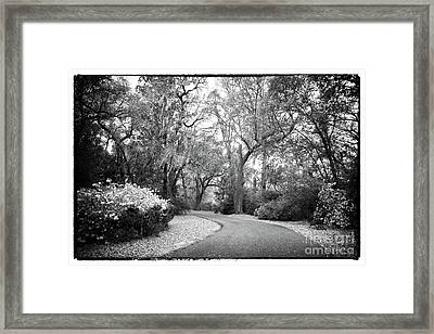 Charles Towne Curves Framed Print by John Rizzuto