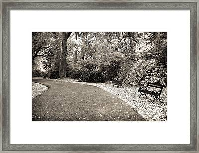 Charles Towne Day Framed Print by John Rizzuto