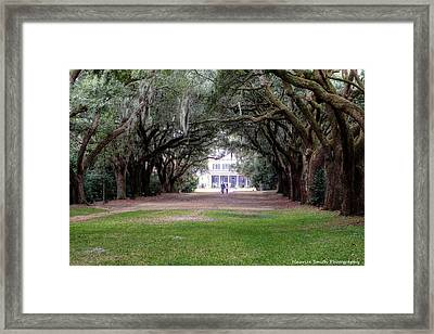 Charles Towne Landing Avenue Of Moss-drapped Oaks Framed Print by Maurice Smith