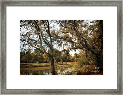 Charles Towne Nature Framed Print by John Rizzuto