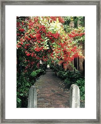 Charleston Charm Framed Print