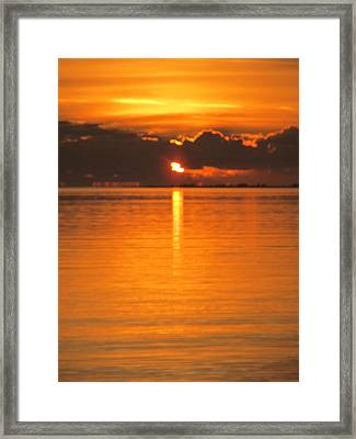 Framed Print featuring the photograph Charleston Morning Sunrise  by Joetta Beauford