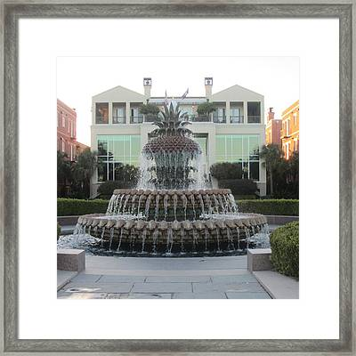 Charleston Pineapple 9 Framed Print by Cathy Lindsey