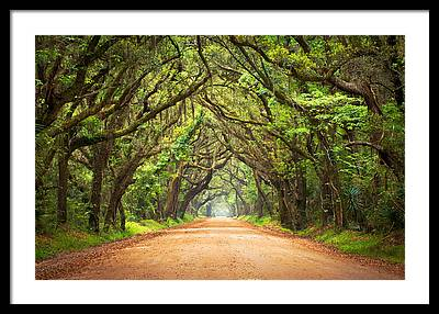 Nature Framed Prints