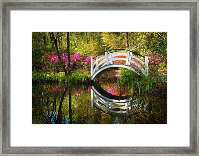 Charleston Sc Magnolia Plantation Spring Blooming Azalea Flowers Garden Framed Print by Dave Allen