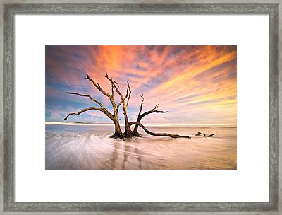 Charleston Sc Sunset Folly Beach Trees - The Calm Framed Print by Dave Allen
