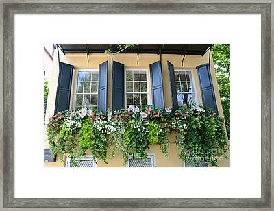 Charleston Window Box Flower Photography - Charleston Yellow Blue Green Floral Window Boxes Framed Print by Kathy Fornal
